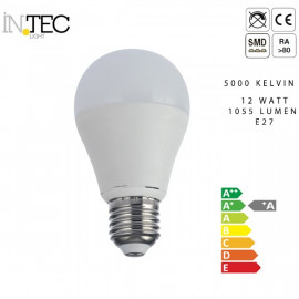 Lampadina 3000 5000 kelvin Led 12 watt