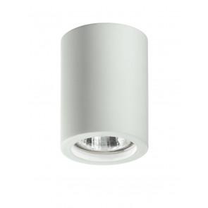 I-SPACE-R1 - Faretto Cilindrico Orientabile Gesso Verniciabile Cartongesso GU10