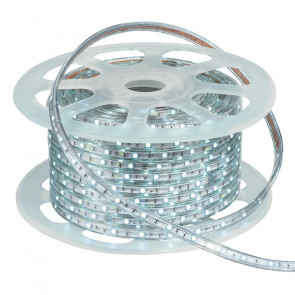 STRIP-R-5050HV-30/F - Striscia led da 50 m 7,2 watt 6000 kelvin
