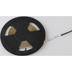 STRIPLED-CC30-F Strip led striscia luminiosa SMD 30 mt  senza silicone 5000K 720Lm/m 7,2w/m